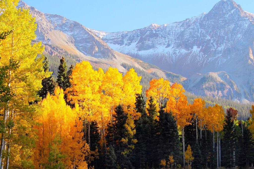 picture of telluride, colorado fall foliage