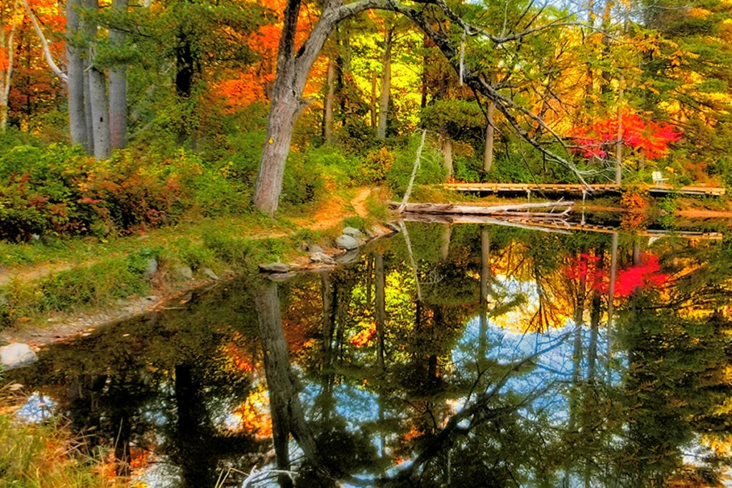 picture of berkshires, massachusetts fall foliage